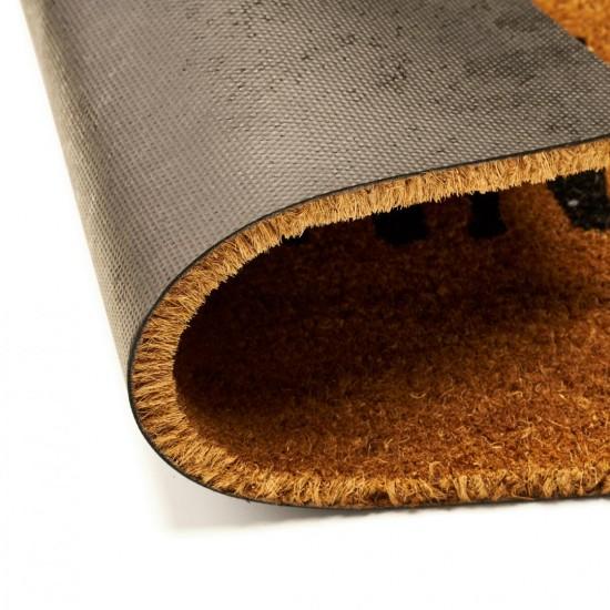 Covoras intrare Heinner Care, fibre cocos, 40X60 cm, money✔️mesaj haios, Ai adus banii?